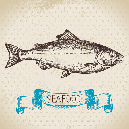 sea fish: Vintage sea background. Hand drawn sketch seafood vector illustration of salmon fish