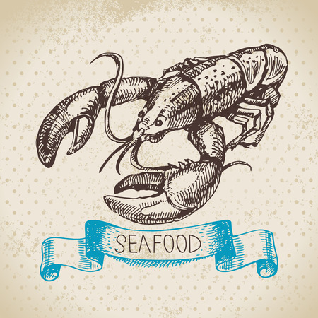 Vintage sea background. Hand drawn sketch seafood vector illustration of lobster Vector
