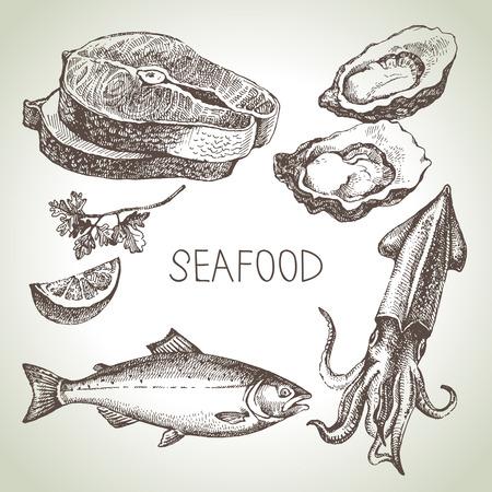 ilustracion: Dibujado a mano conjunto de dibujos de pescados y mariscos. Ilustración vectorial