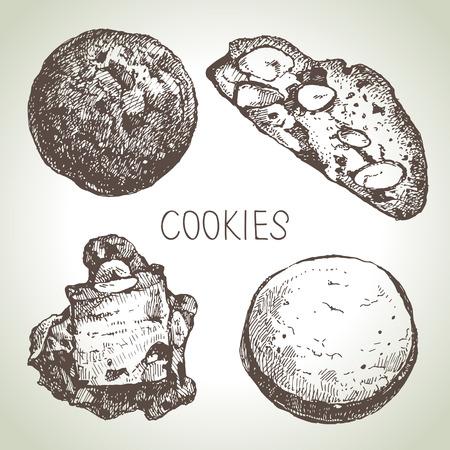 chocolate cookies: Hand drawn sketch sweet cookies set. Vector illustration