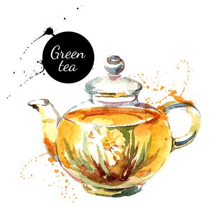 Watercolor hand drawn painted tea vector illustration. Menu design