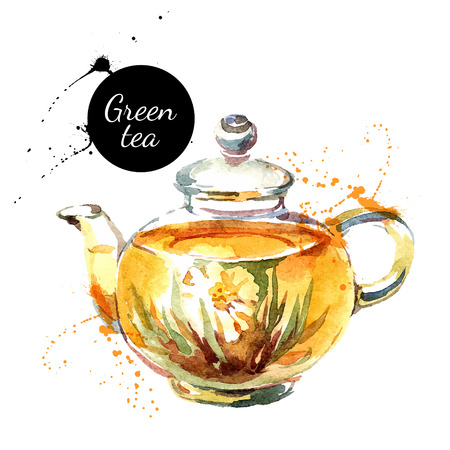 kettle: Watercolor hand drawn painted tea vector illustration. Menu design