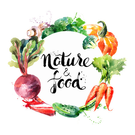 food: Eco food menu background. Watercolor hand drawn vegetables. Vector illustration