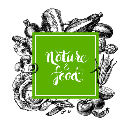 bio food: Eco natural food menu background. Sketch hand drawn vegetables frame. Vector illustration