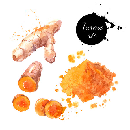 Turmeric. Hand drawn watercolor painting on white background. Vector illustration