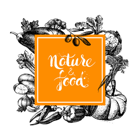 Eco natural food menu background. Sketch hand drawn vegetables frame. Vector illustration Фото со стока - 42910749