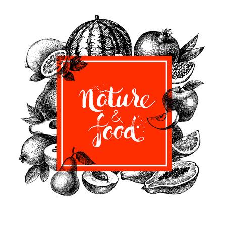 natural food: Eco natural food menu background. Sketch hand drawn fruits frame. Vector illustration
