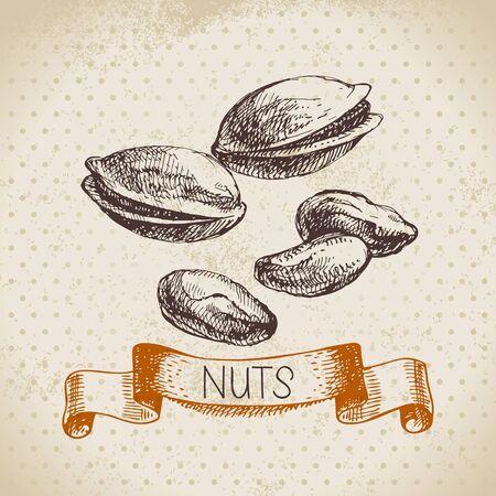 pistachio: Hand drawn sketch nut vintage background. Vector illustration of eco food
