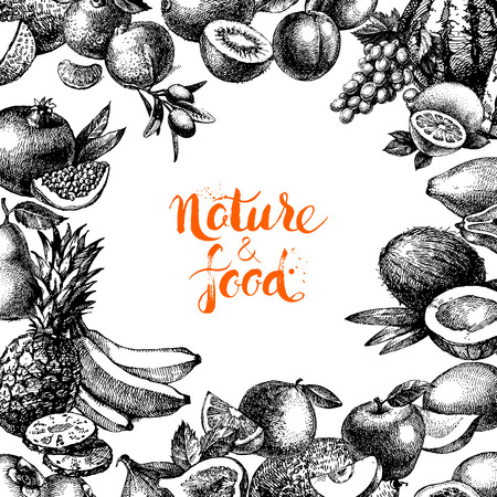 food illustrations: Vintage hand drawn sketch fruits and berries background. Eco food design. Vector illustration