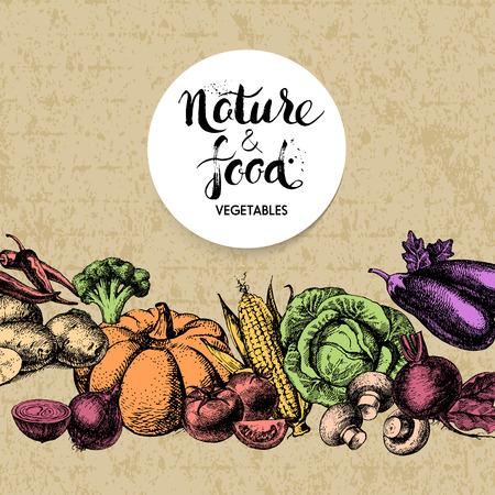 fruit and vegetable: Vintage hand drawn sketch vegetables background. Eco food design. Vector illustration