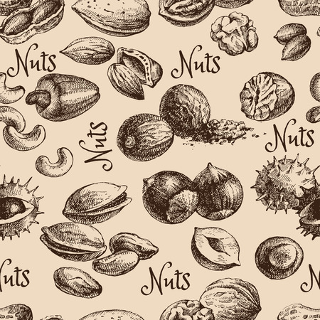 nut trees: Vintage hand drawn sketch nuts seamless pattern. Vector illustration