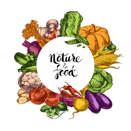 natural food: Vintage hand drawn sketch vegetables background. Eco food design. Vector illustration