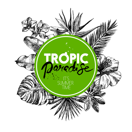 Hand drawn sketch tropical plants background. Vector illustration