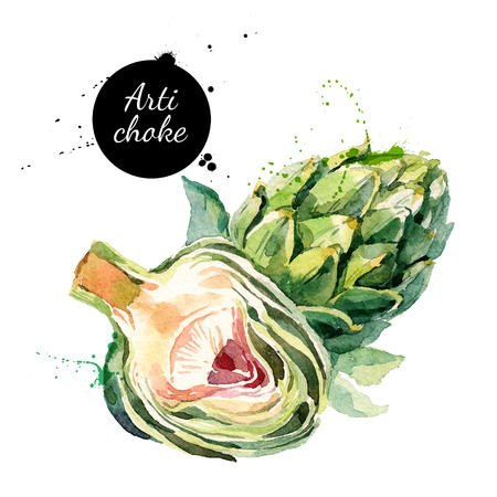 heart health: Watercolor artichokes. Isolated eco food illustration on white background Illustration