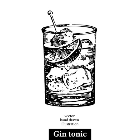 gin: Hand drawn sketch cocktail gin tonic vintage isolated object. Vector illustration