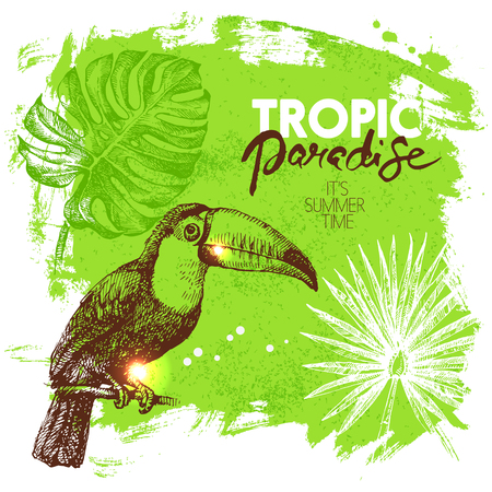 Hand drawn sketch tropical paradise plants and birds background. Vector illustration