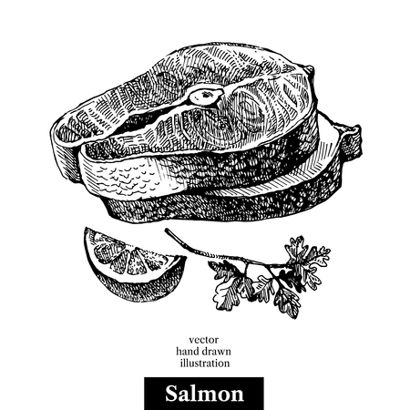 Hand drawn sketch seafood vector black and white vintage illustration of salmon fish pieces. Isolated object on white background. Menu design
