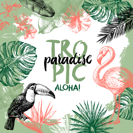 birds of paradise: Hand drawn sketch tropical paradise plants and birds background. Vector illustration