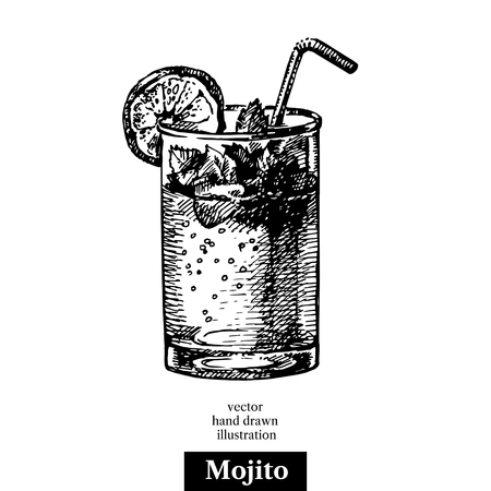 Hand drawn sketch cocktail mojito vintage isolated object. Vector illustration