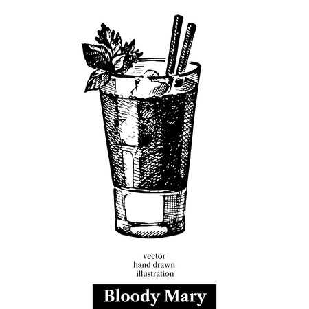 Hand drawn sketch cocktail bloody mary vintage isolated object. Vector illustration