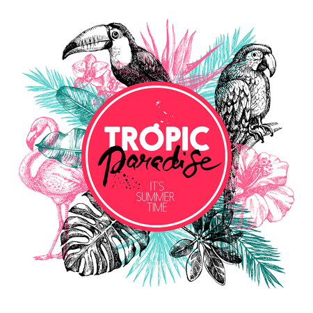 Hand drawn sketch tropical paradise plants and birds frame background. Vector illustration  イラスト・ベクター素材