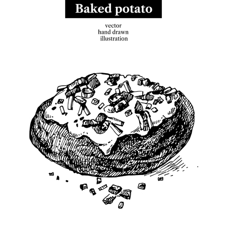 baked potatoes: Hand drawn sketch backed potato. isolated illustration. Menu restaurant design