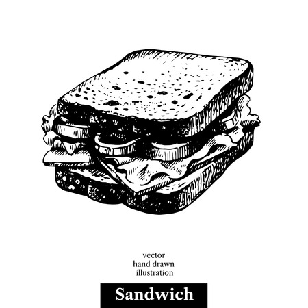 Sandwich. Vintage fast food hand drawn sketch illustration. Isolated background. Menu design Illustration