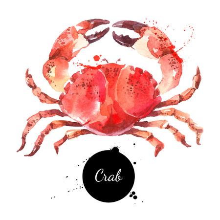 dibujado a mano de acuarela cangrejo. ilustración de pescados y mariscos frescos aislados sobre fondo blanco
