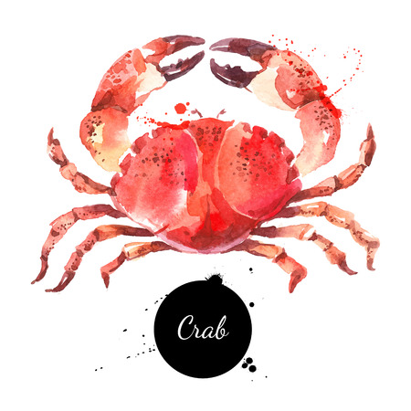 Watercolor hand drawn crab. Isolated fresh seafood illustration on white background Фото со стока - 67963427