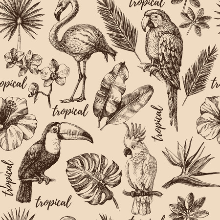 Hand drawn sketch tropical paradise plants and birds vintage seamless pattern.