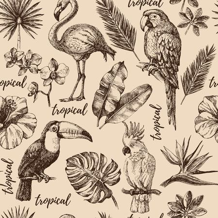 R? Cznie rysowane szkic tropikalnych ro? Liny ro? Lin i ptaków vintage bezszwowych wzór. Ilustracje wektorowe