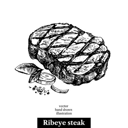 손으로 그린 스케치 ribeye 스테이크입니다. 흰색 배경에 고립 된 음식 그림 일러스트