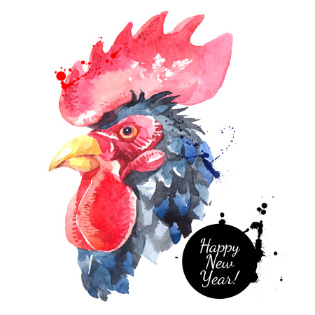 Watercolor hand drawn rooster head vector illustration. Painted sketch chicken portrait isolated . Symbol of new year 2017