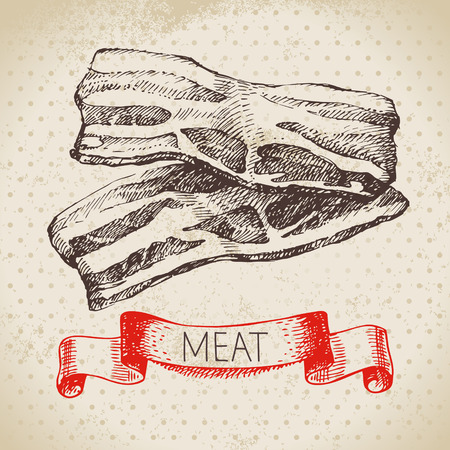 Hand drawn sketch meat product. Vector vintage bacon illustration. Menu design  イラスト・ベクター素材