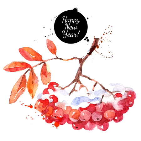 Watercolor rowan berries with leaves. Hand drawn vector isolated illustration