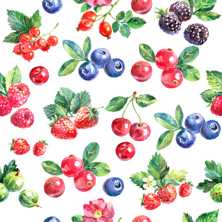 Watercolor hand drawn berries seamless pattern. Painted isolated fruit illustration on white background