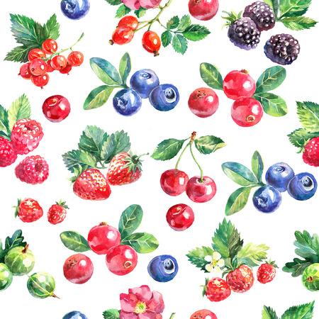 Waterverf handgetekende bessen naadloze patroon. Geverfde geïsoleerde fruit illustratie op witte achtergrond Stockfoto - 73594252