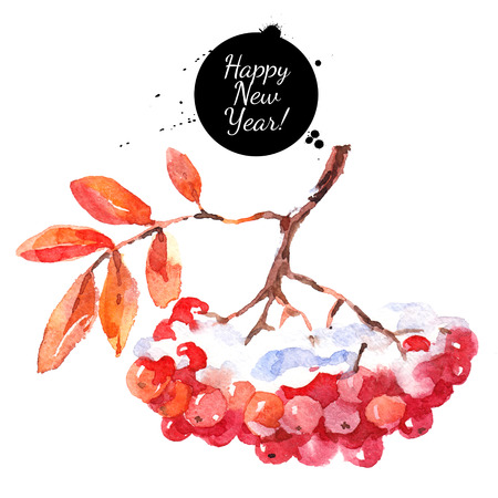 Watercolor rowan berries with leaves. Hand drawn isolated illustration