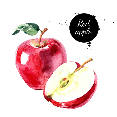 Waterverf handgetekende rode appel. Geïsoleerde eco natuurlijk voedsel fruit illustratie op een witte achtergrond Stockfoto