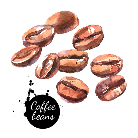 chicchi di caff?: Fagioli di caffè disegnati a mano acquerello. Illustrazione di cibo naturale isolato su sfondo bianco Archivio Fotografico