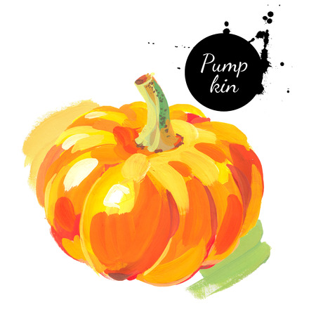 Pumpkin. Hand drawn sketch watercolor acrylic painting on white background. Isolated illustration