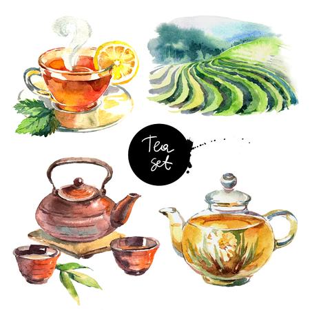Getrokken illustratie van de waterverf de hand getrokken geschilderde die thee op witte achtergrond wordt geïsoleerd. Elementen voor menuontwerp