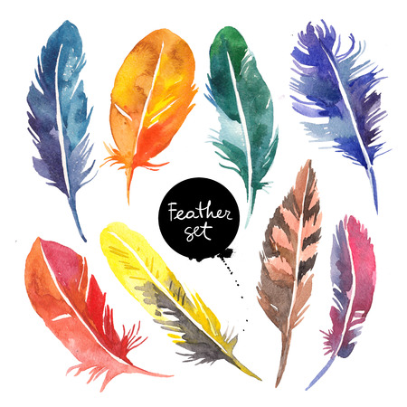 Watercolor feather set. Hand drawn boho illustration on isolated white background