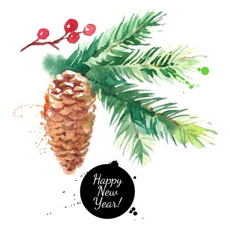 コーン付き水彩モミの木の枝。手描きベクトル絶縁イラスト