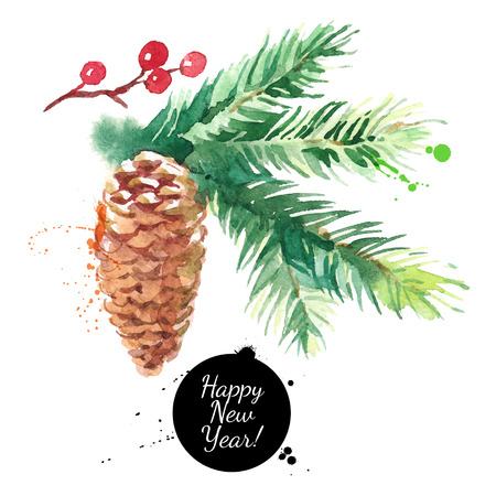Watercolor fir tree branch with cone. Hand drawn vector isolated illustration