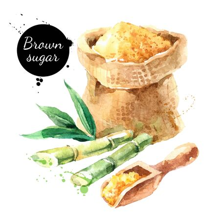 Hand drawn sketch watercolor natural brown cane sugar. Vector isolated food illustration