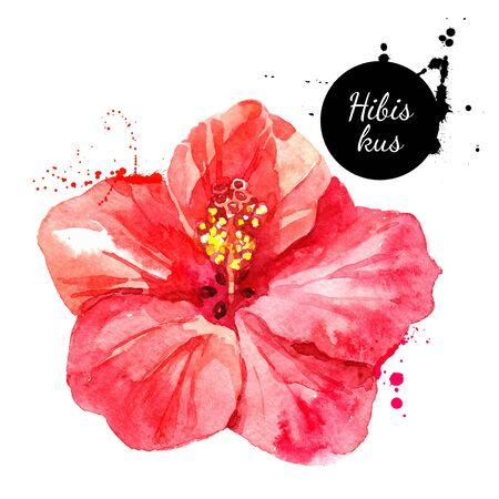 Handgezeichnete Skizze Aquarell tropische Blume Hibiskus. Vektor gemalte isolierte exotische Naturillustration Vektorgrafik