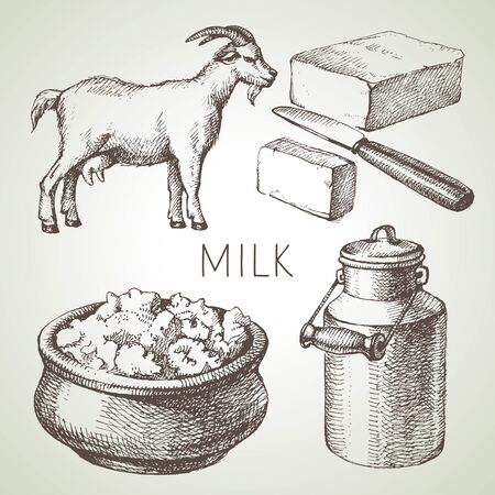 Hand drawn sketch milk products set. Vector black and white vector vintage illustration