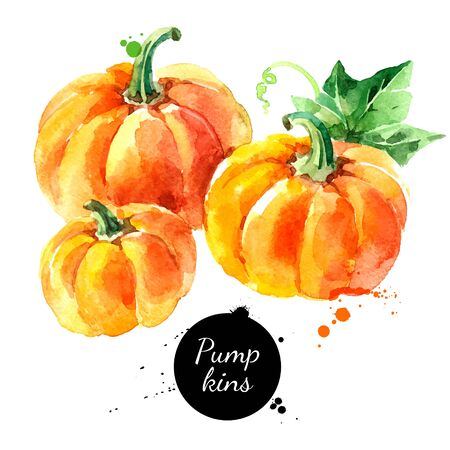 Watercolor hand drawn sketch Happy Thankgiving Pumpkin. Vector holiday isolated painted illustration on white background