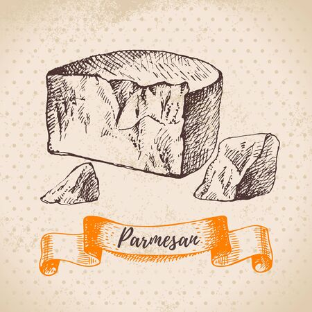 Hand drawn sketch Parmesan cheese background. Vector illustration of natural milk foods